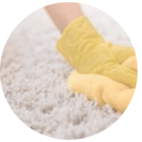 Carpet Odour Removal Caboolture