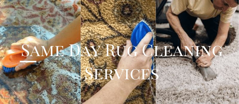 Same Day Rug Cleaning Services